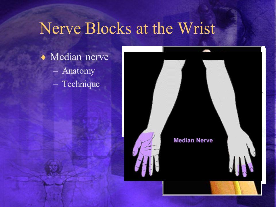  Median nerve –Anatomy –Technique