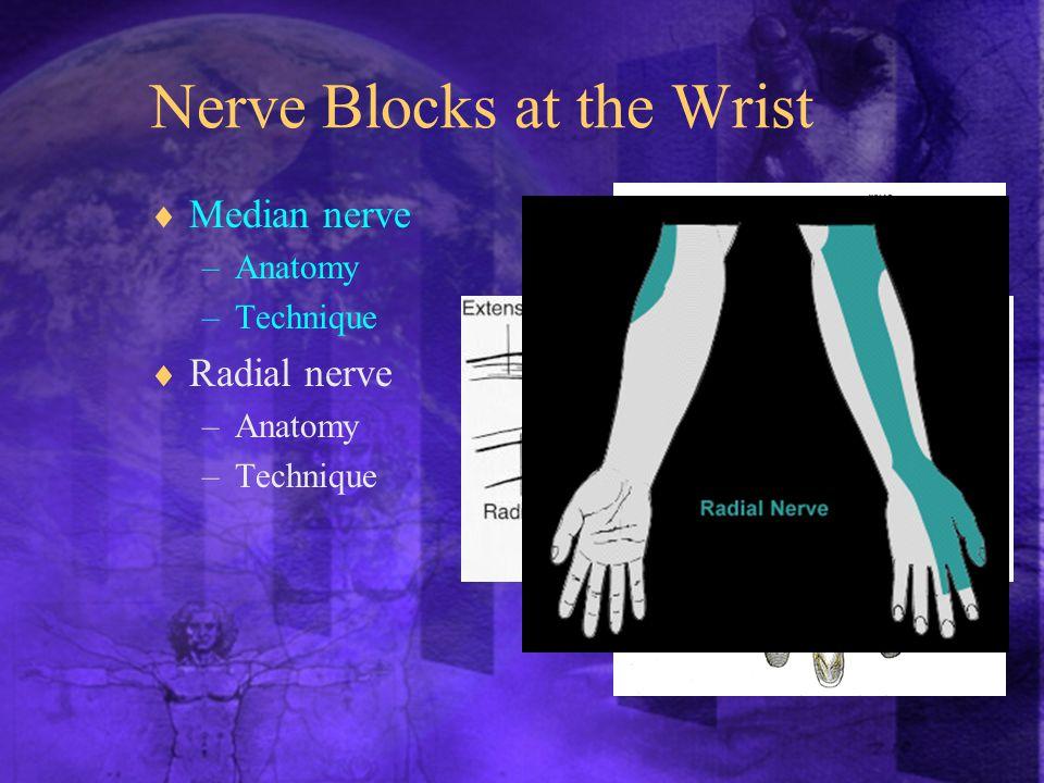 Nerve Blocks at the Wrist  Median nerve –Anatomy –Technique  Radial nerve –Anatomy –Technique