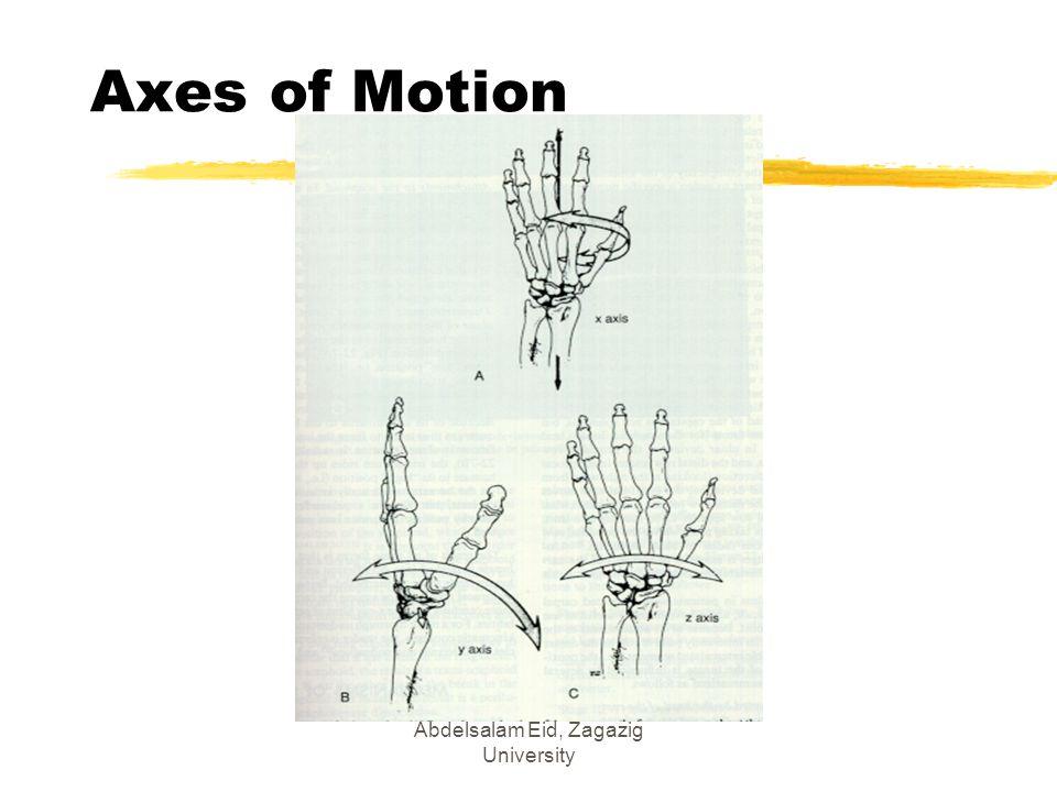 Abdelsalam Eid, Zagazig University Axes of Motion