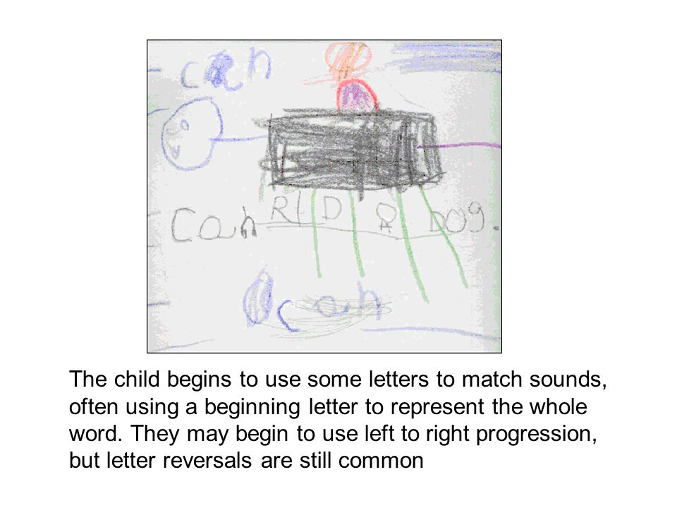 The child begins to use some letters to match sounds, often using a beginning letter to represent the whole word. They may begin to use left to right