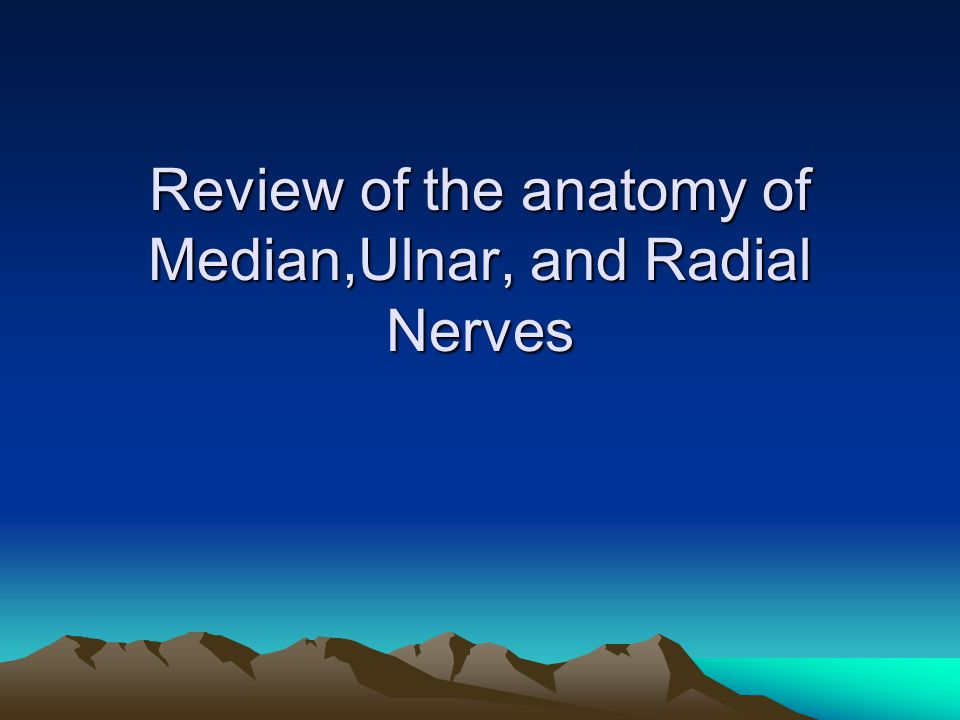 Review of the anatomy of Median,Ulnar, and Radial Nerves