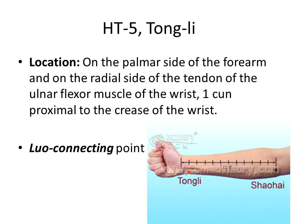 HT-5, Tong-li Location: On the palmar side of the forearm and on the radial side of the tendon of the ulnar flexor muscle of the wrist, 1 cun proximal to the crease of the wrist.