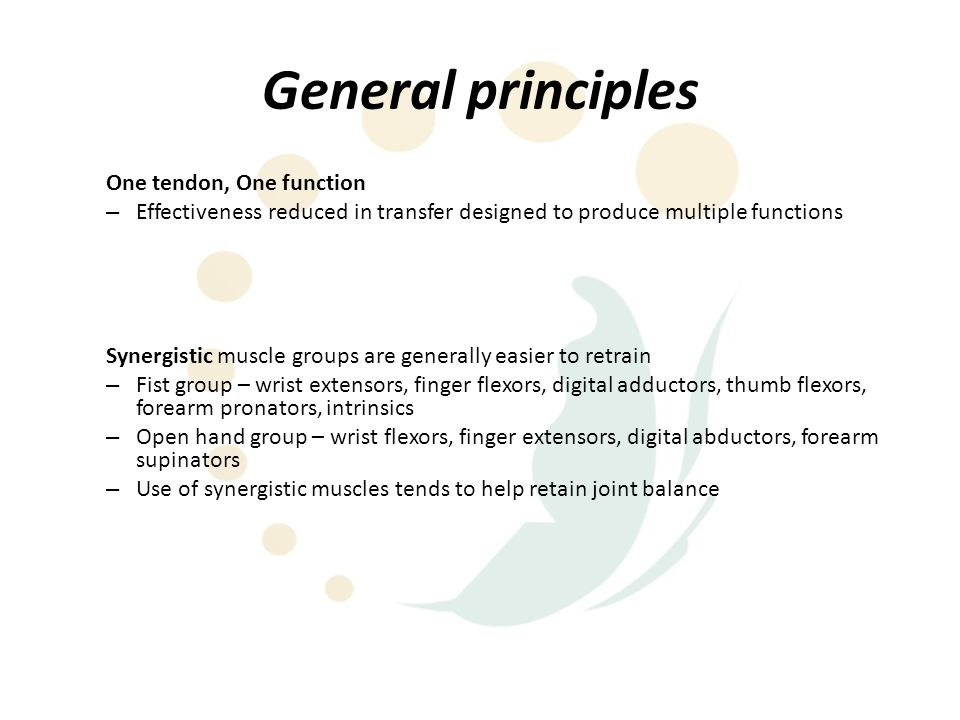 General principles One tendon, One function – Effectiveness reduced in transfer designed to produce multiple functions Synergistic muscle groups are g