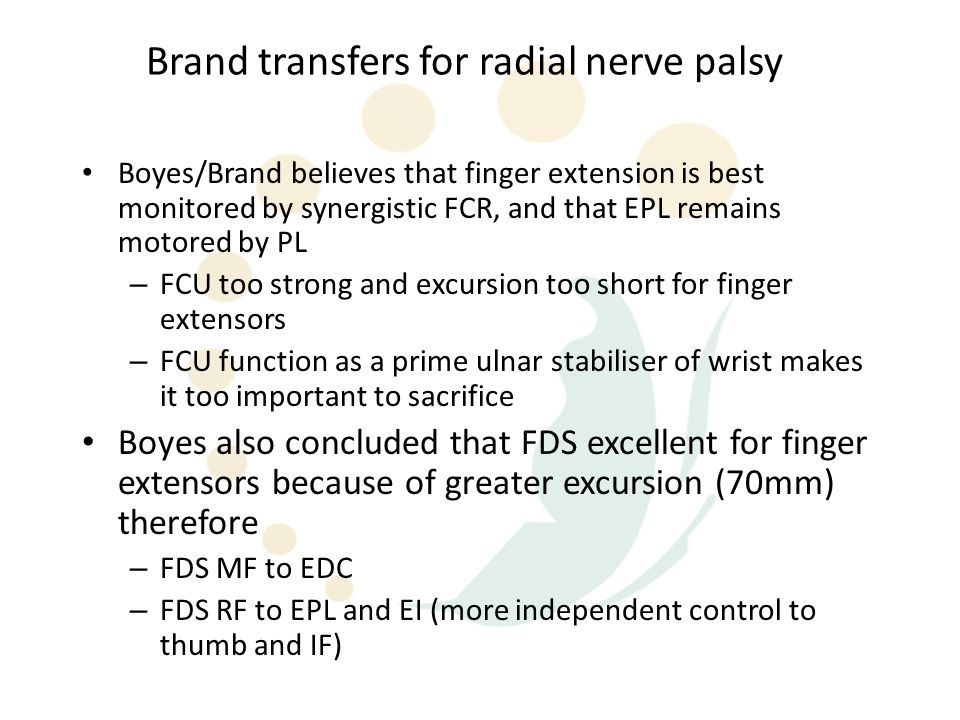 Boyes/Brand believes that finger extension is best monitored by synergistic FCR, and that EPL remains motored by PL – FCU too strong and excursion too