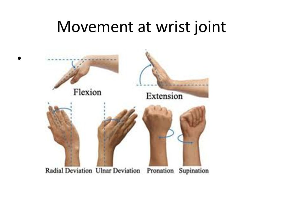 Movement at wrist joint