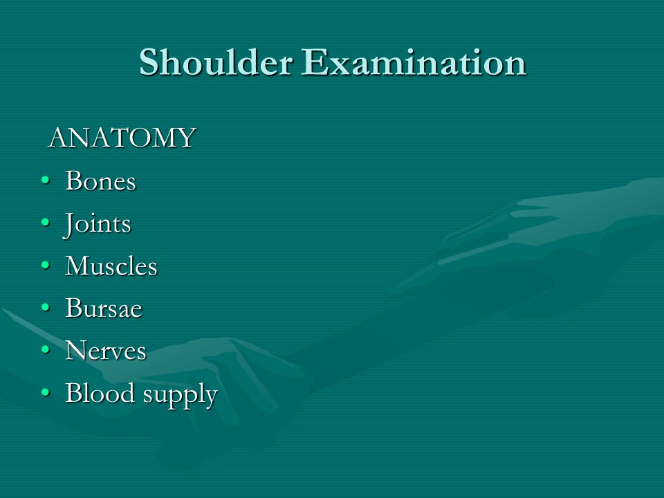 Shoulder Examination ANATOMY ANATOMY BonesBones JointsJoints MusclesMuscles BursaeBursae NervesNerves Blood supplyBlood supply