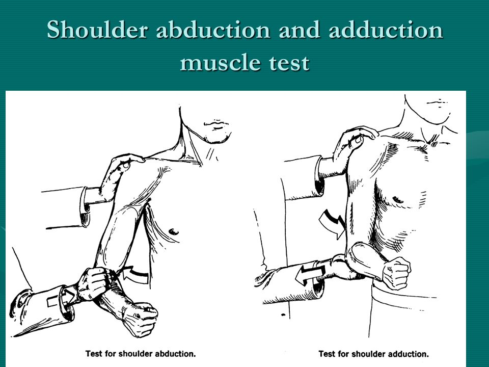 Shoulder abduction and adduction muscle test