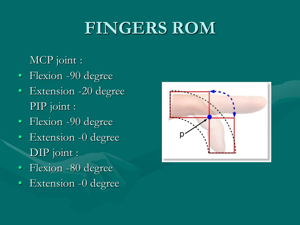 FINGERS ROM MCP joint : MCP joint : Flexion -90 degreeFlexion -90 degree Extension -20 degreeExtension -20 degree PIP joint : PIP joint : Flexion -90 degreeFlexion -90 degree Extension -0 degreeExtension -0 degree DIP joint : DIP joint : Flexion -80 degreeFlexion -80 degree Extension -0 degreeExtension -0 degree