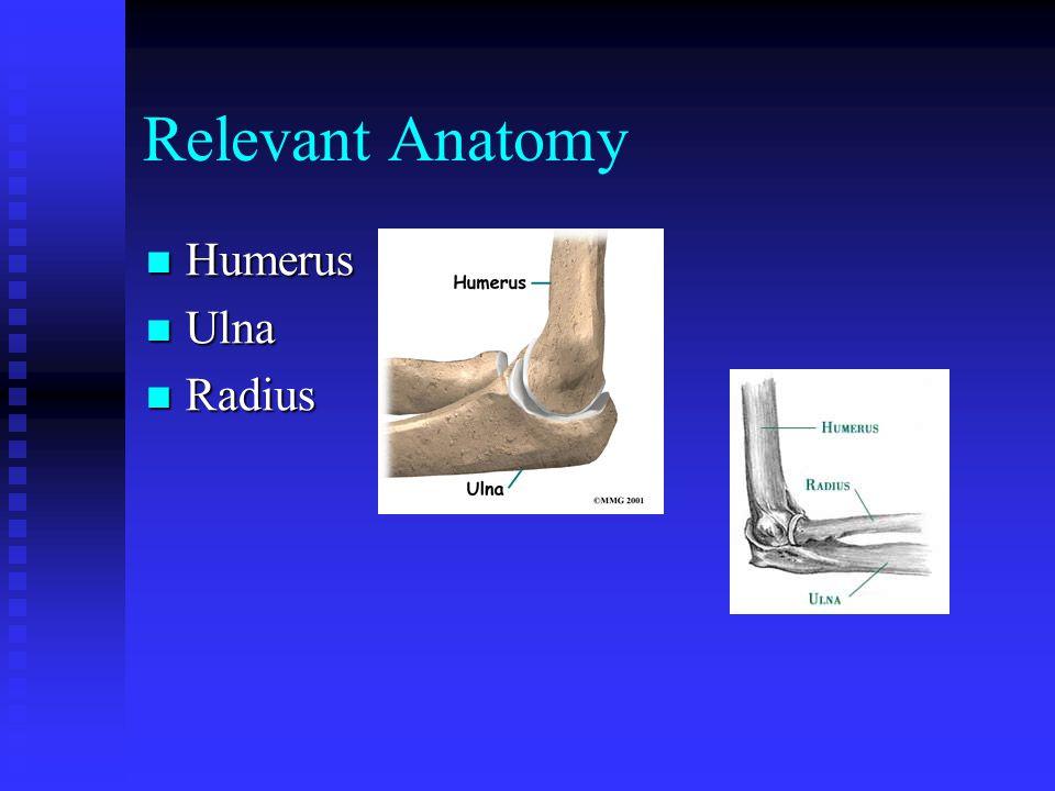 Relevant Anatomy Humerus Humerus Ulna Ulna Radius Radius
