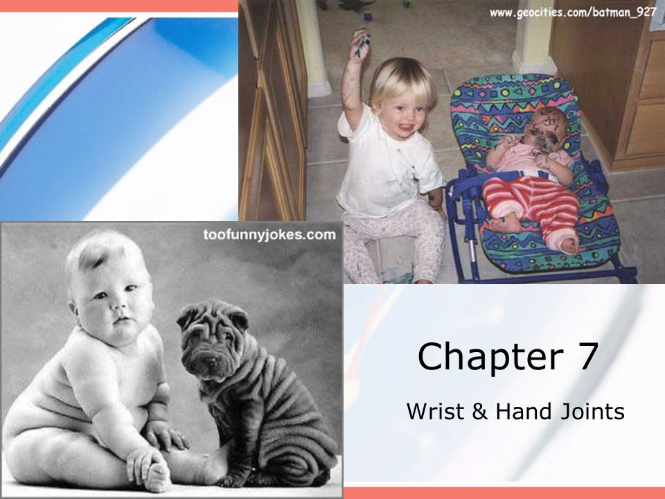 Chapter 7 Wrist & Hand Joints