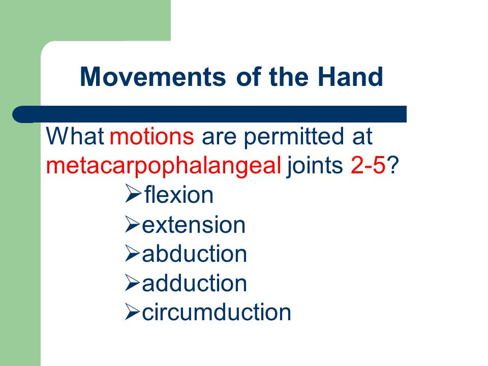 Movements of the Hand What motions are permitted at metacarpophalangeal joints 2-5?  flexion  extension  abduction  adduction  circumduction