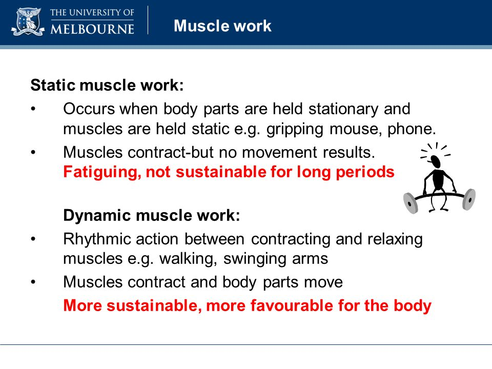 Muscle work Static muscle work: Occurs when body parts are held stationary and muscles are held static e.g.