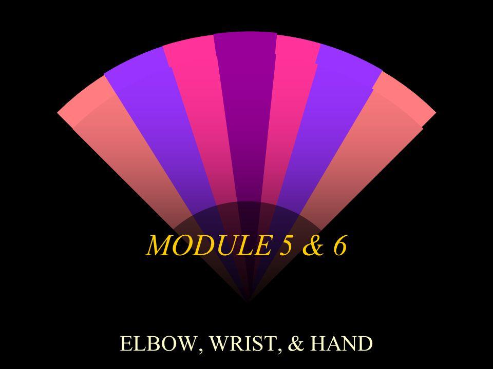 MODULE 5 & 6 ELBOW, WRIST, & HAND