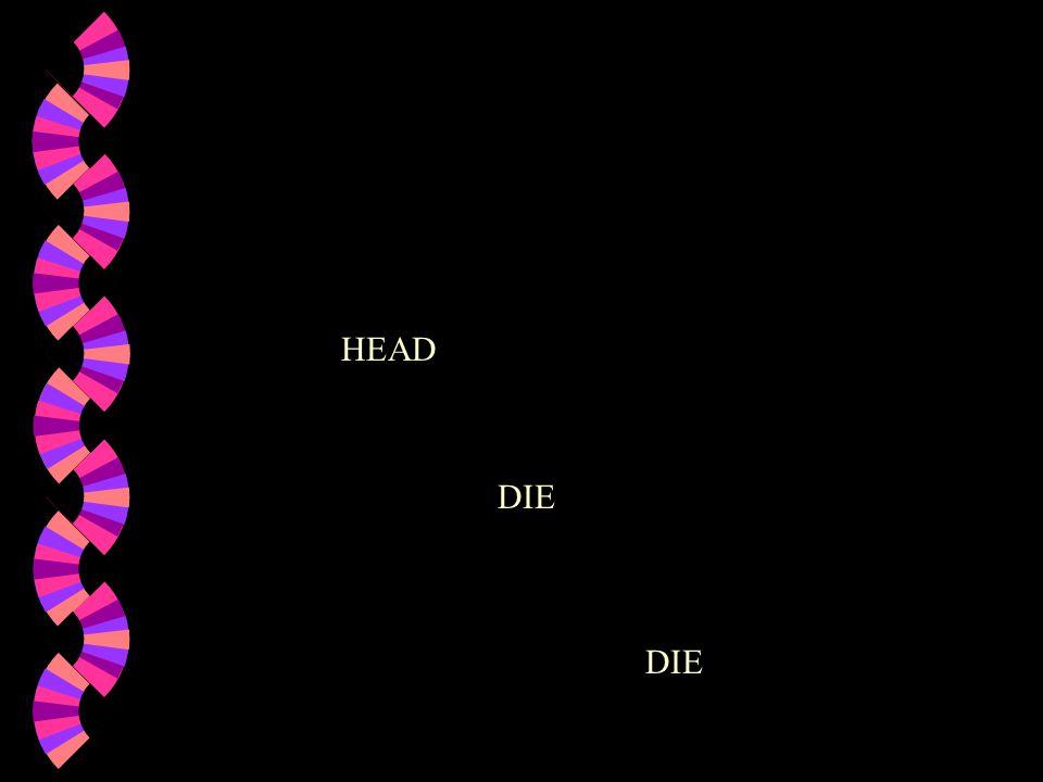 HEAD DIE