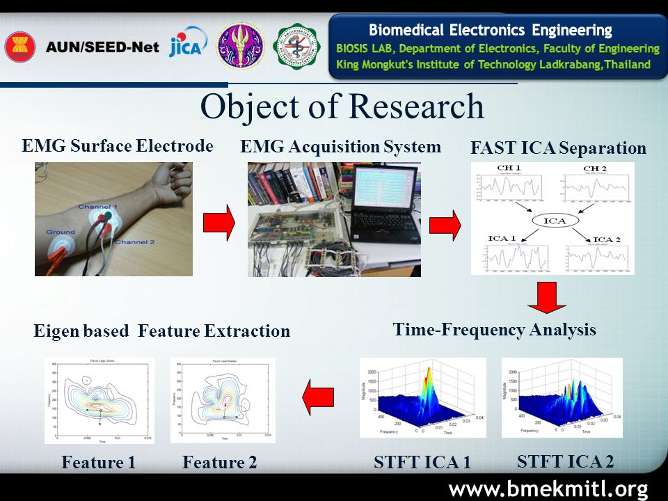 EMG Surface Electrode EMG Acquisition System FAST ICA Separation Time-Frequency Analysis Eigen based Feature Extraction Feature 1Feature 2 STFT ICA 1 STFT ICA 2 Object of Research www.bmekmitl.org
