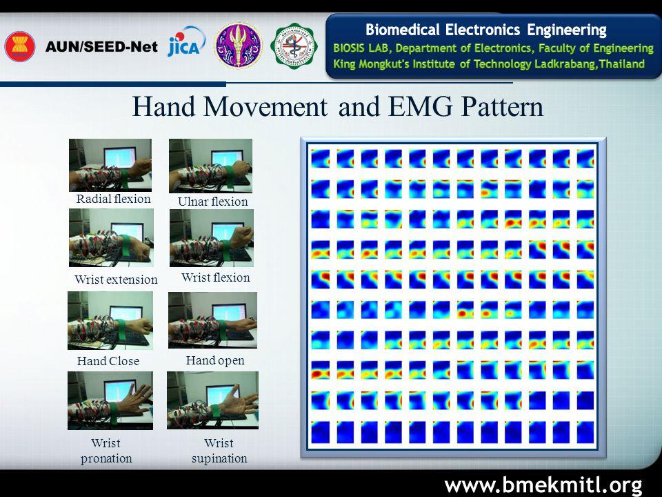www.bmekmitl.org Hand Close Wrist extension Wrist flexion Wrist pronation Hand open Wrist supination Radial flexion Ulnar flexion Hand Movement and EMG Pattern