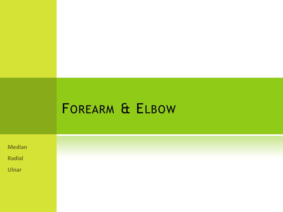F OREARM & E LBOW Median Radial Ulnar