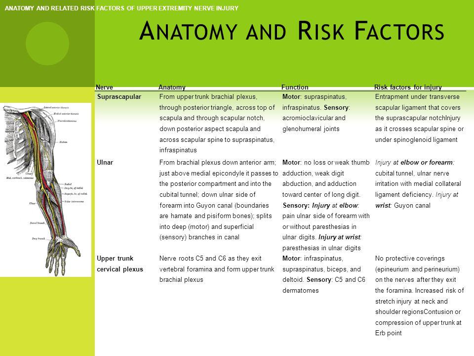 C LINICAL P RESENTATION  Women >men; Ages 20-40  Symptoms -- recurrent, subj.