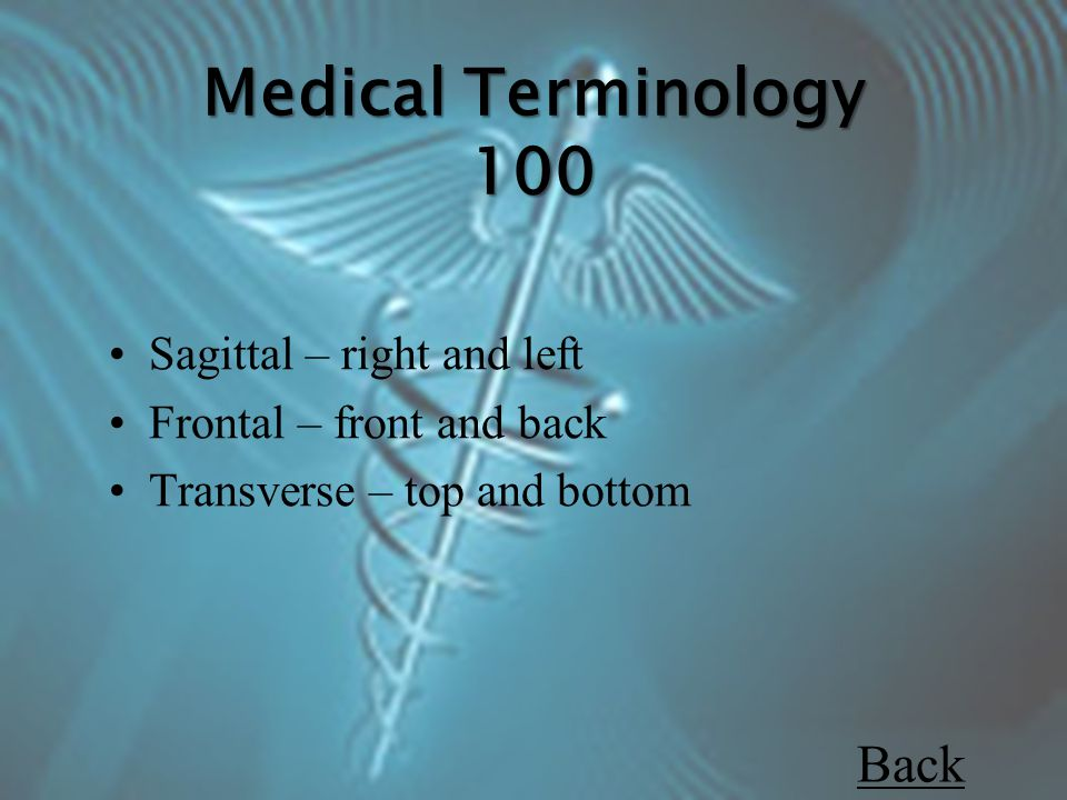 Medical Terminology 100 Sagittal – right and left Frontal – front and back Transverse – top and bottom Back