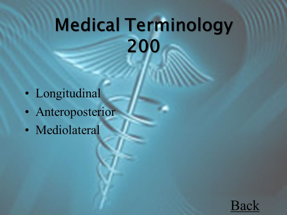 Longitudinal Anteroposterior Mediolateral Back Medical Terminology 200