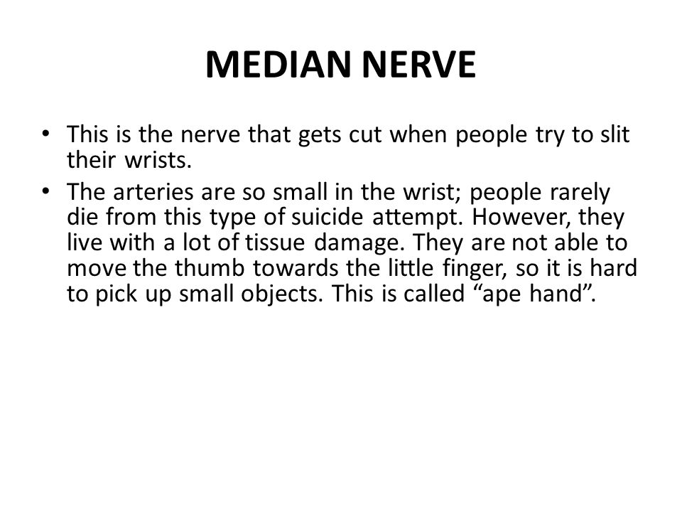 MEDIAN NERVE This is the nerve that gets cut when people try to slit their wrists. The arteries are so small in the wrist; people rarely die from this