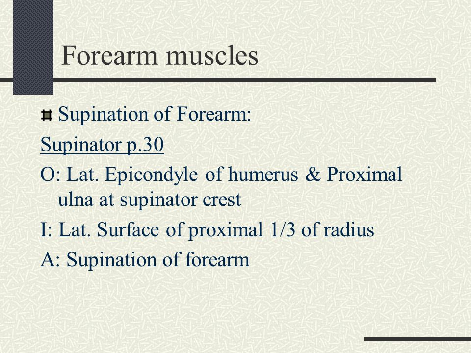 Forearm muscles Flexion of the wrist: - Flexor Carpi Radialis - Flexor Carpi Ulnaris - Palmaris Longus (freq.
