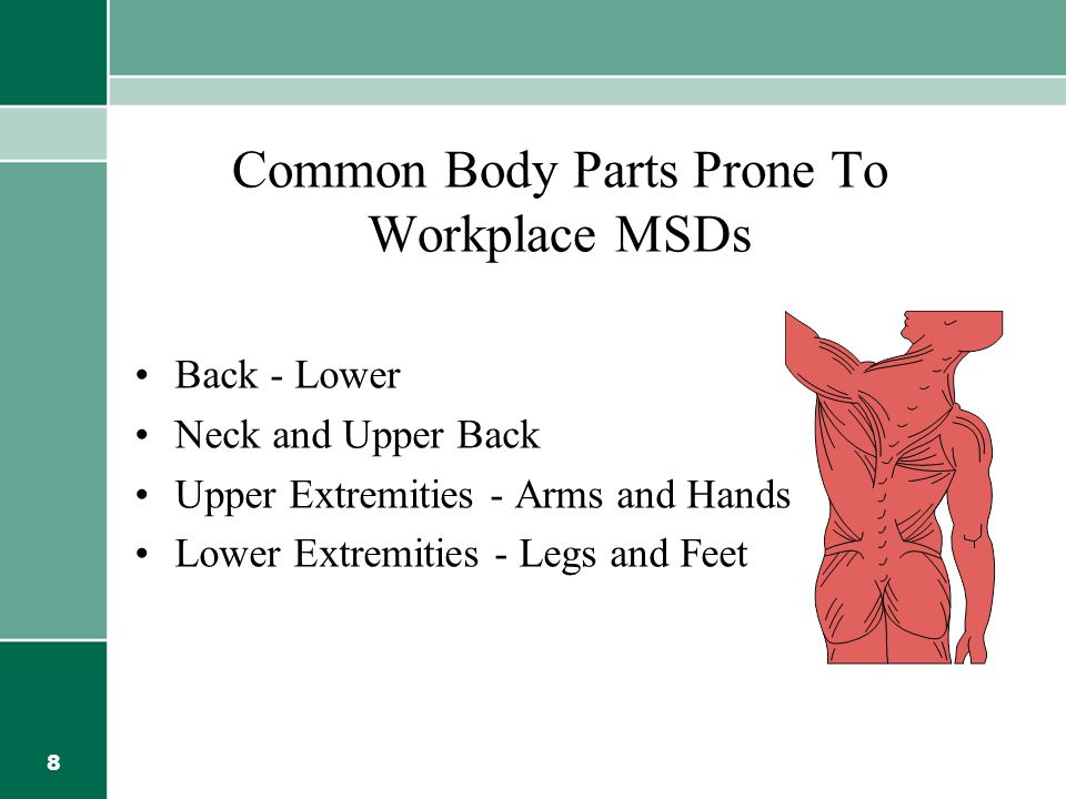 8 Common Body Parts Prone To Workplace MSDs Back - Lower Neck and Upper Back Upper Extremities - Arms and Hands Lower Extremities - Legs and Feet