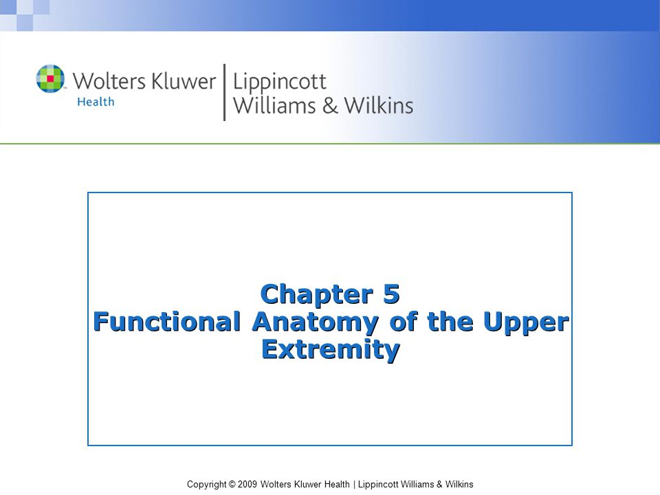 Copyright © 2009 Wolters Kluwer Health | Lippincott Williams & Wilkins Chapter 5 Functional Anatomy of the Upper Extremity