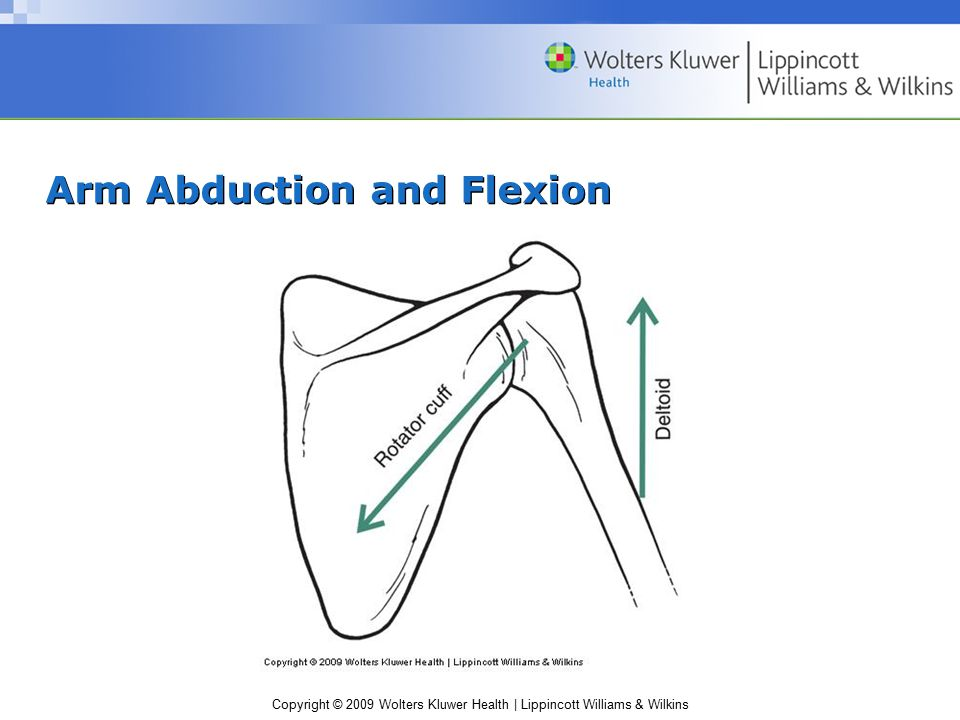 Copyright © 2009 Wolters Kluwer Health | Lippincott Williams & Wilkins Arm Abduction and Flexion