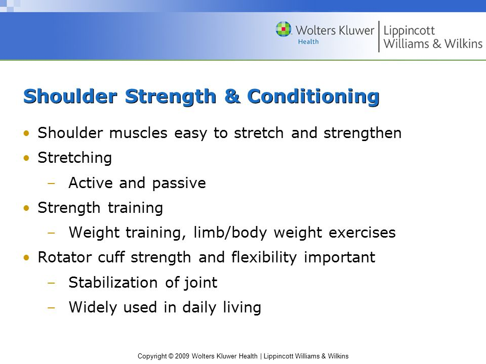 Copyright © 2009 Wolters Kluwer Health | Lippincott Williams & Wilkins Shoulder Strength & Conditioning Shoulder muscles easy to stretch and strengthe