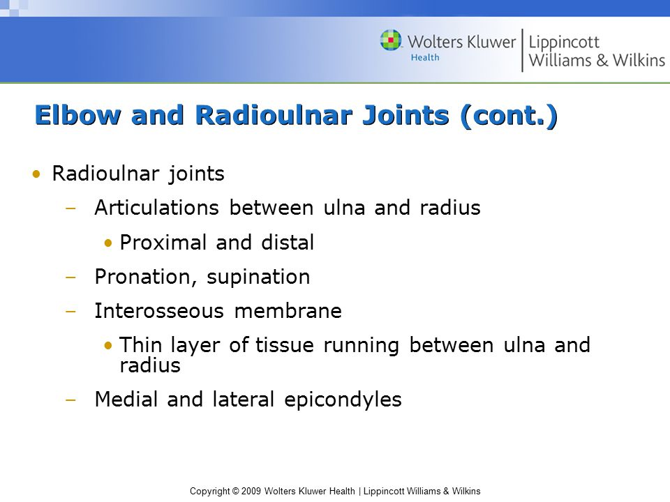 Copyright © 2009 Wolters Kluwer Health | Lippincott Williams & Wilkins Elbow and Radioulnar Joints (cont.) Radioulnar joints –Articulations between ul