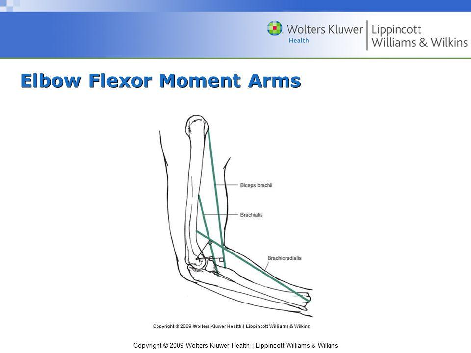 Copyright © 2009 Wolters Kluwer Health | Lippincott Williams & Wilkins Elbow Flexor Moment Arms