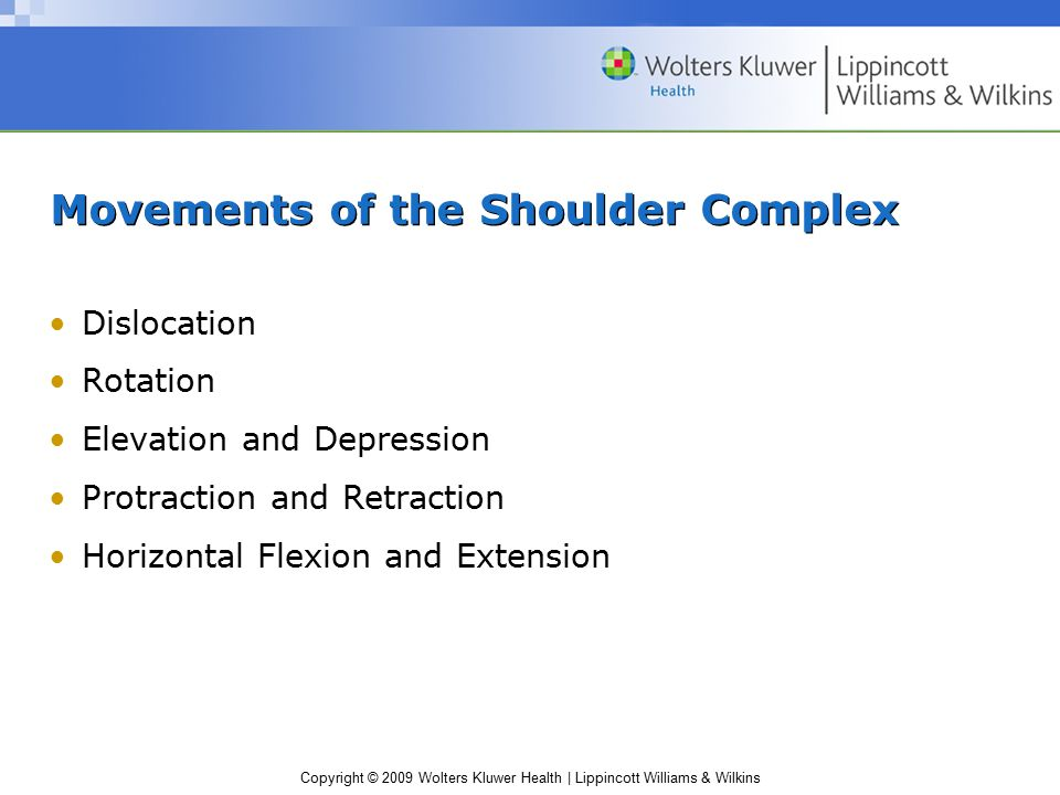 Copyright © 2009 Wolters Kluwer Health | Lippincott Williams & Wilkins Movements of the Shoulder Complex Dislocation Rotation Elevation and Depression