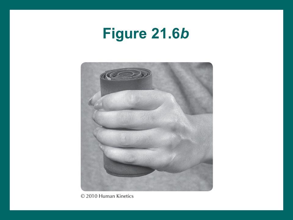 Figure 21.6b