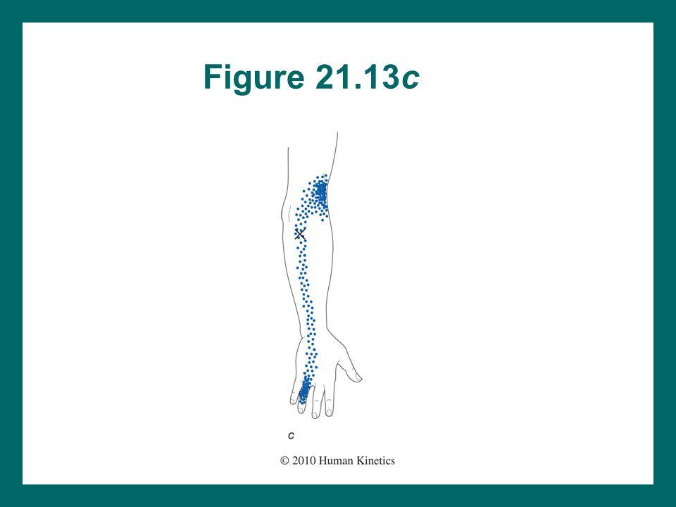 Figure 21.13c
