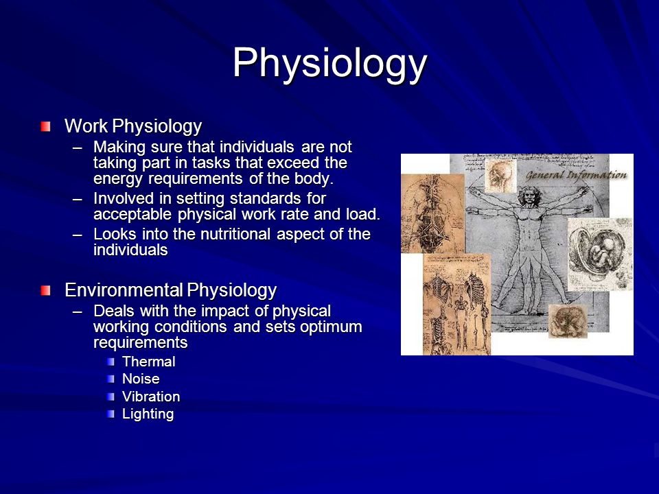 Physiology Work Physiology –Making sure that individuals are not taking part in tasks that exceed the energy requirements of the body. –Involved in se