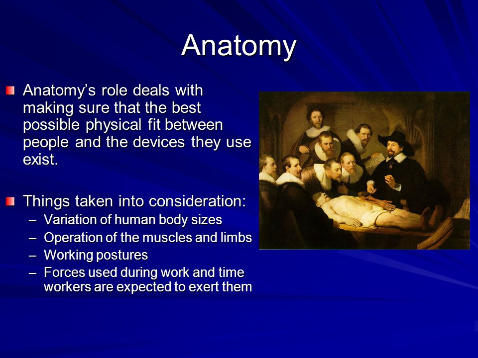Anatomy Anatomy's role deals with making sure that the best possible physical fit between people and the devices they use exist. Things taken into con