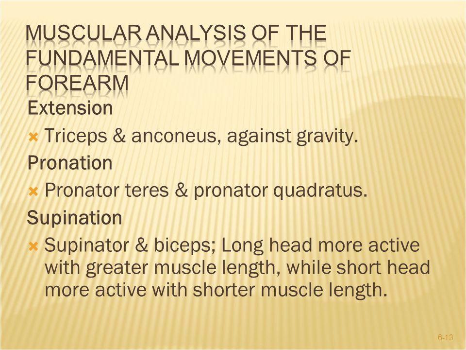 6-13 Extension  Triceps & anconeus, against gravity. Pronation  Pronator teres & pronator quadratus. Supination  Supinator & biceps; Long head more