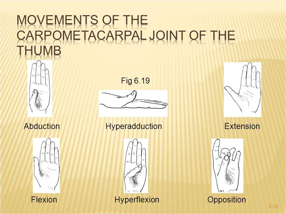 6-18 Fig 6.19 AbductionHyperadductionExtension FlexionHyperflexionOpposition