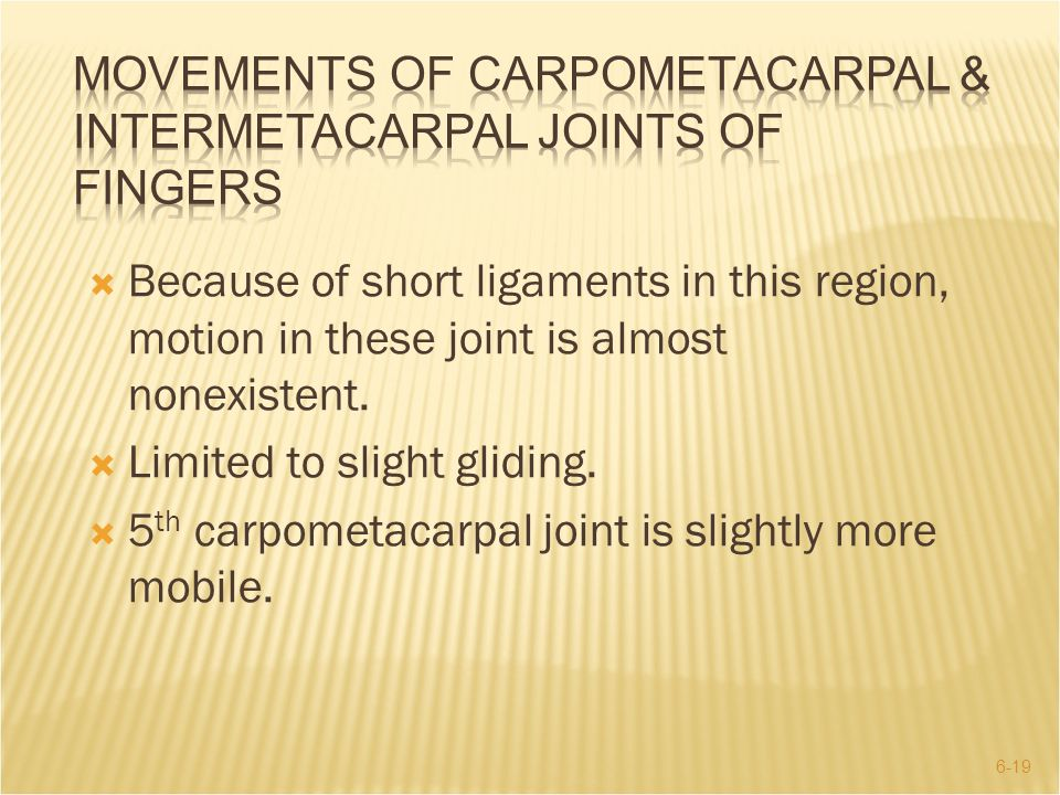 6-19  Because of short ligaments in this region, motion in these joint is almost nonexistent.  Limited to slight gliding.  5 th carpometacarpal joi