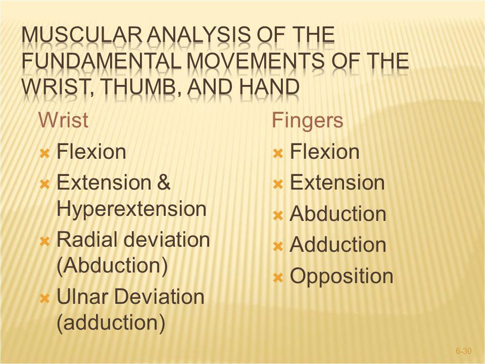 6-30 Wrist  Flexion  Extension & Hyperextension  Radial deviation (Abduction)  Ulnar Deviation (adduction) Fingers  Flexion  Extension  Abducti