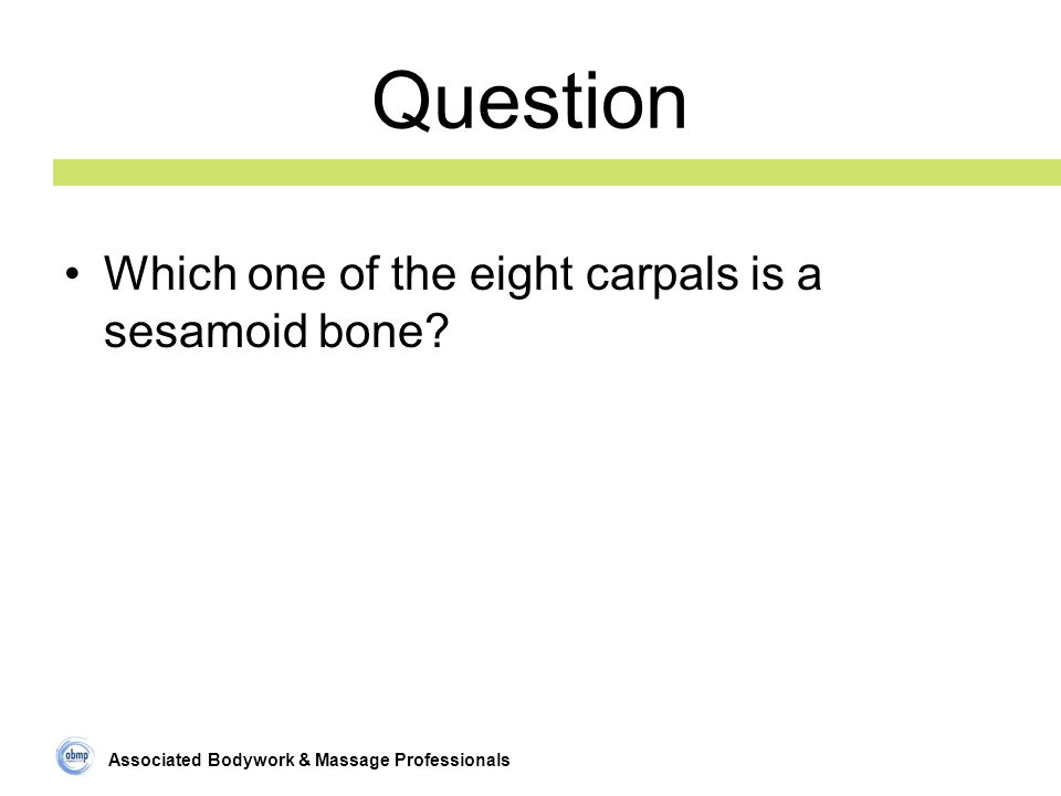Associated Bodywork & Massage Professionals Question Which one of the eight carpals is a sesamoid bone?