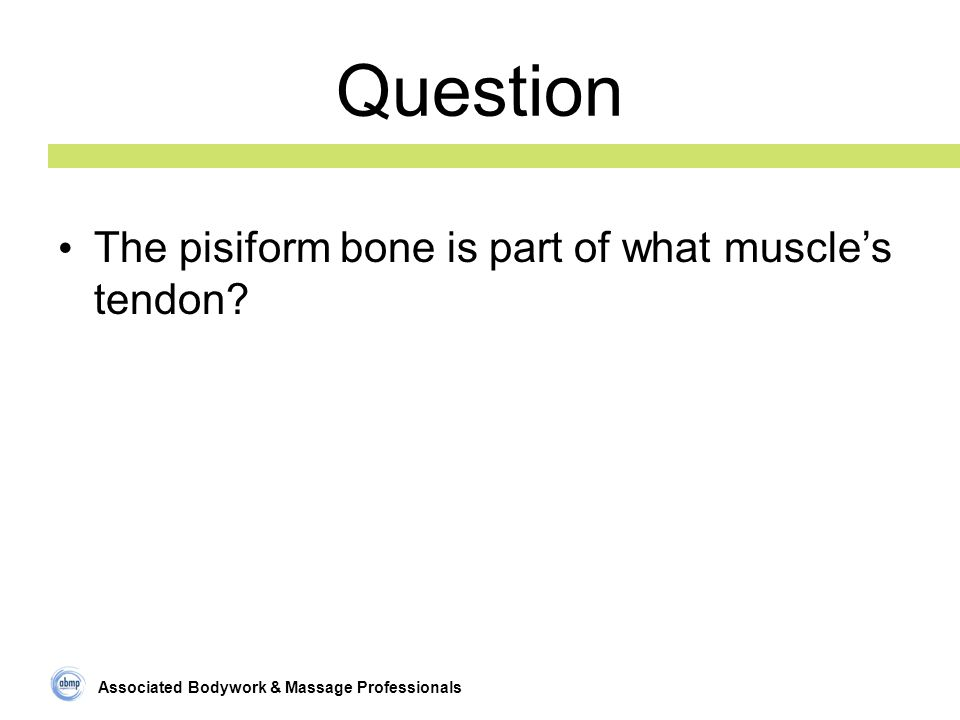 Associated Bodywork & Massage Professionals Question The pisiform bone is part of what muscle's tendon?