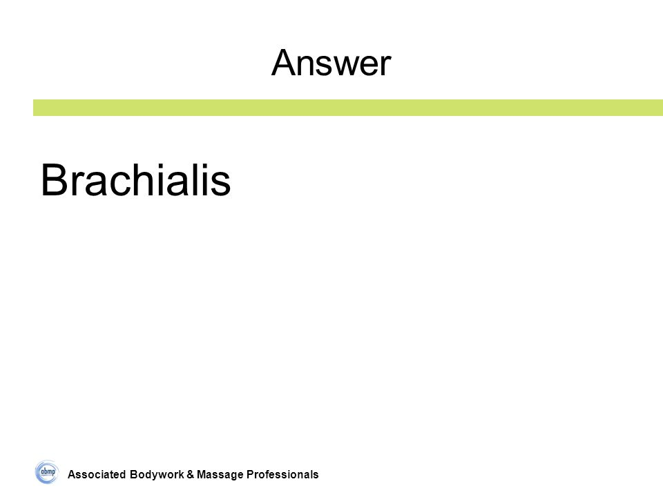 Associated Bodywork & Massage Professionals Answer Brachialis