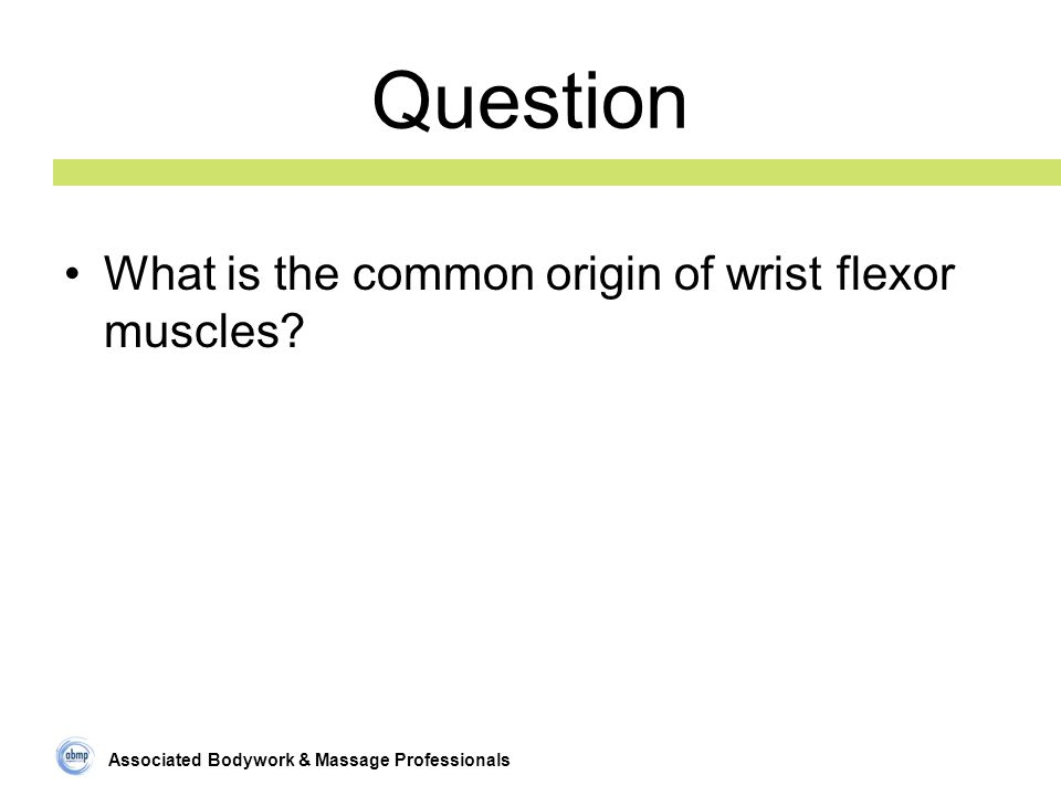Associated Bodywork & Massage Professionals Question What is the common origin of wrist flexor muscles?