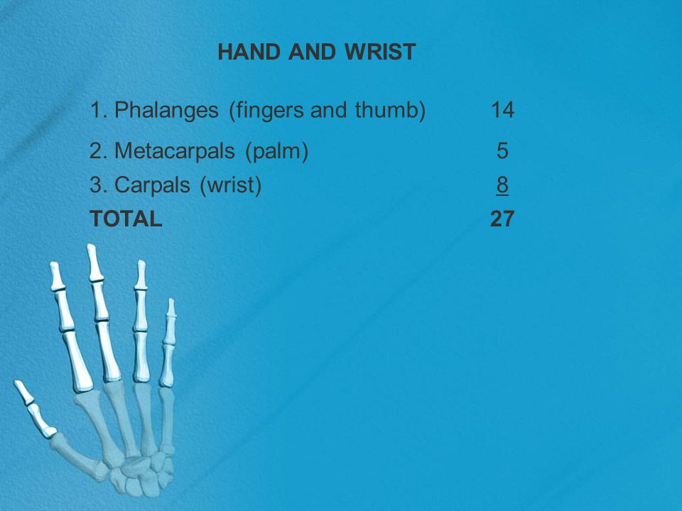 PA wrist—radial deviation Pathology Demonstrated Fractures of the carpal bones on the ulnar side of the wrist, especially the lunate, triquetrum, pisiform, and hamate, are demonstrated Technical Factors IR size—18 × 24 cm (8 × 10 inches) Division in half, crosswise Detail screen, tabletop Digital IR—use lead masking 60 ± 6 kV range