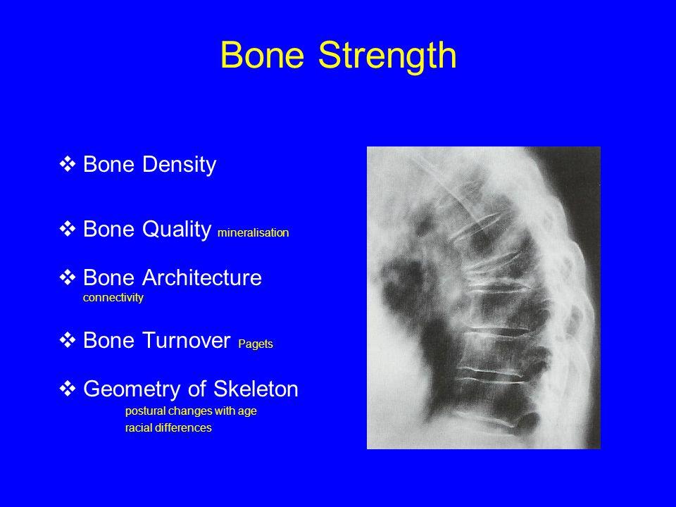 Risk of Fracture  Bone Density  Bone Quality mineralisation  Bone Architecture connectivity  Bone Turnover Pagets  Geometry of Skeleton postural