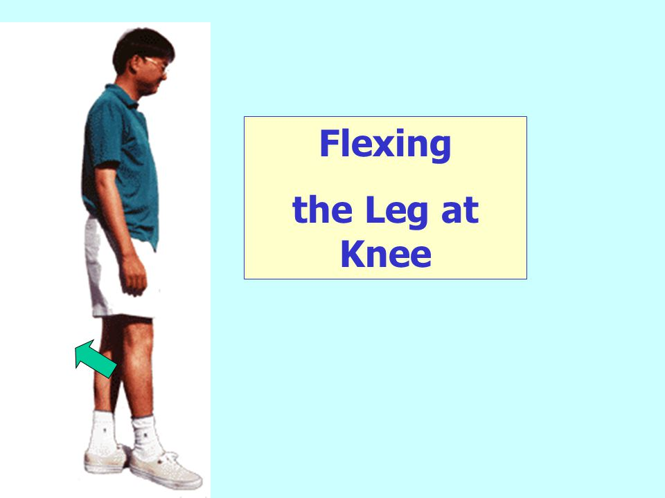 Circumduction of leg.
