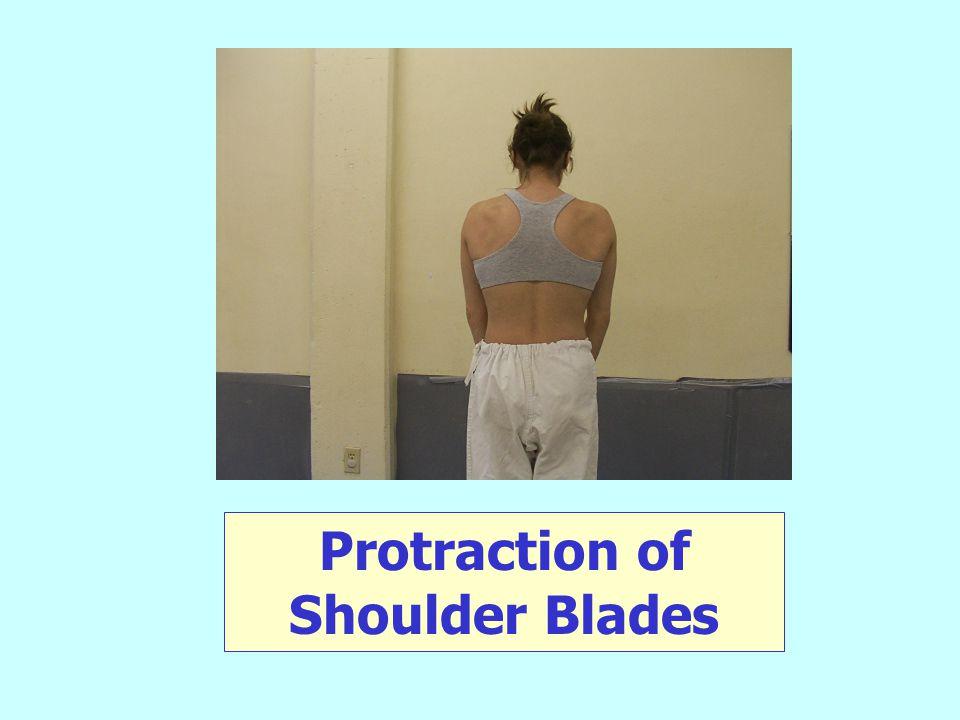 Protraction of Shoulder Blades