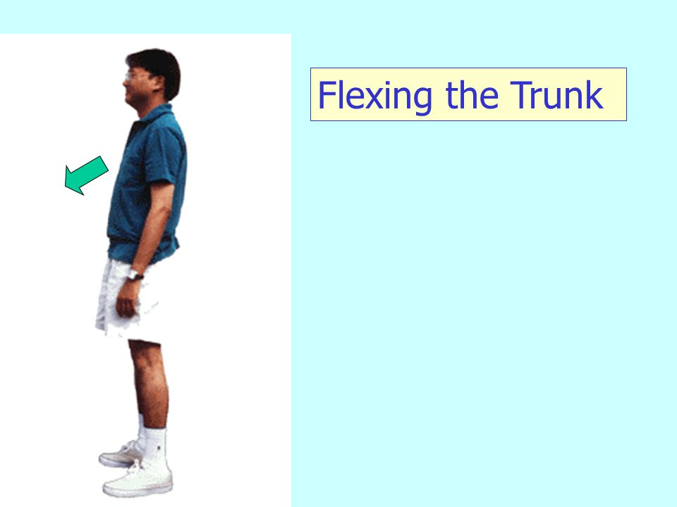 Flexing the Arm at Shoulder Bring entire arm forward with movement at shoulder only.